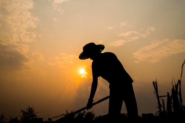 Black silhouette of a worker or gardener holding spade is digging soil at sunset