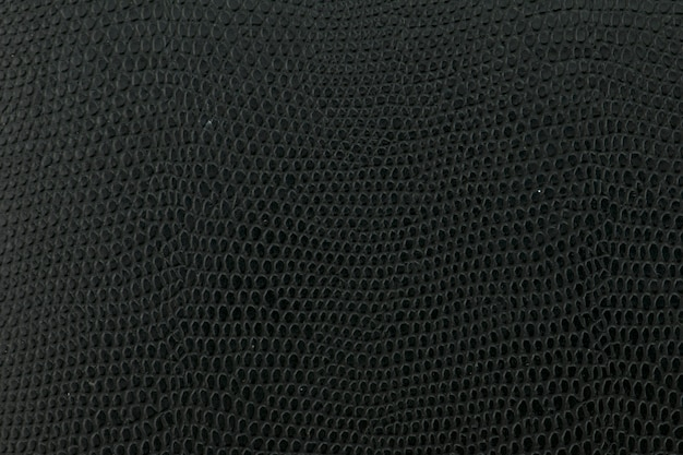 Black snake leather background texture