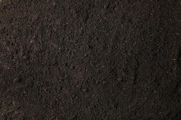 スペース、テキストおよび上面図のためのスペースとしての黒い土。環境を守ること。農業
