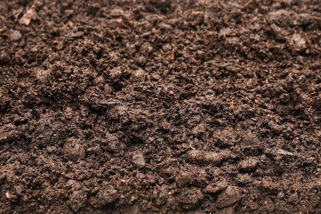 Черная почва для растений фона