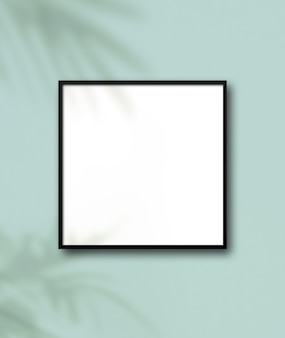 Black square picture frame hanging on a light blue wall floral shadows