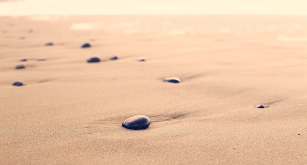 砂漠の砂の上の黒い石