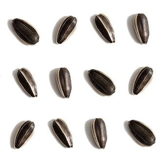 흰색 배경 원시 전체 곡물 패턴에 고립 된 검은 해바라기 씨앗