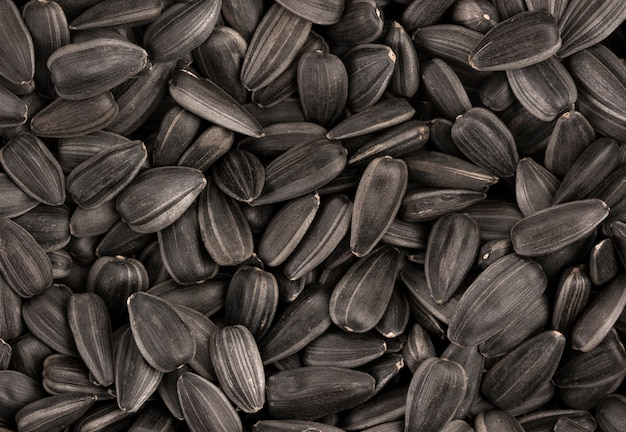 Black sunflower seeds texture or background