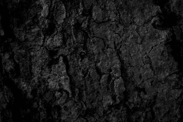 黒い木の樹皮の背景自然の美しい古い木の樹皮の質感夏の間の美しい樹皮を持つ木の年齢に応じて