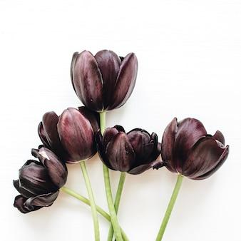 Букет цветов черный тюльпан, изолированные на белой поверхности