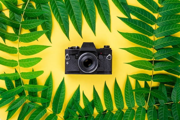 Black vintage retro photo film camera, abstract frame border of tropic green leaves on yellow background, flat lay, top view