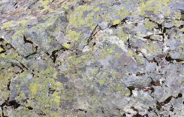 Black volcanic rock texture walls