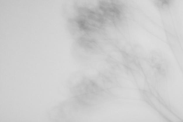 Sfondo di astrazione in bianco e nero