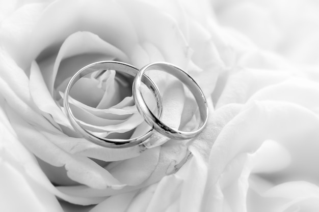 Black and white closeup view of wedding rings against white roses