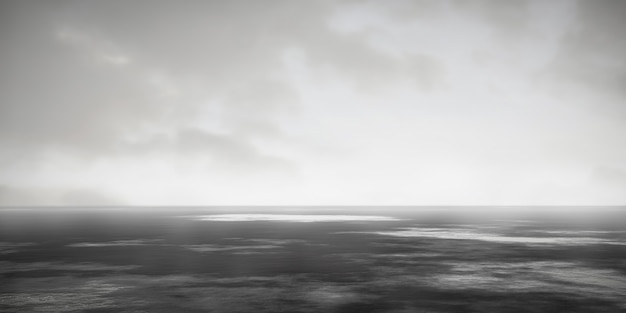Black and white foggy landscape