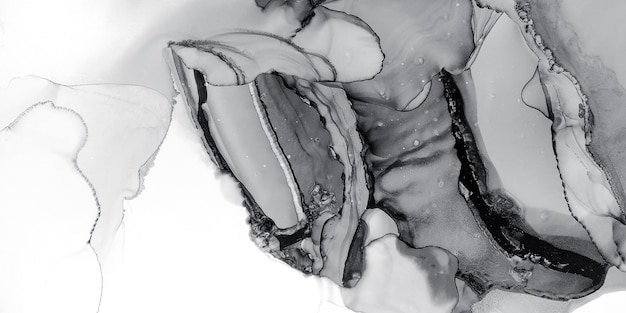 Black white ink fluid. monotone painting. silver paintbrush paper. pastel graphic background. grey wet surface. platinum scratched layout. abstract design. dark black white ink fluid.