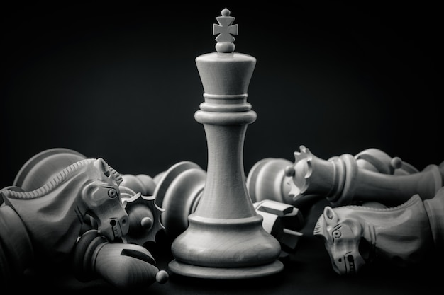 Black and white king and knight of chess setup on dark background .