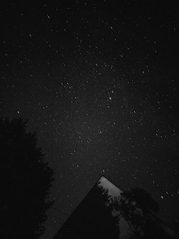 Black and white photo of night sky