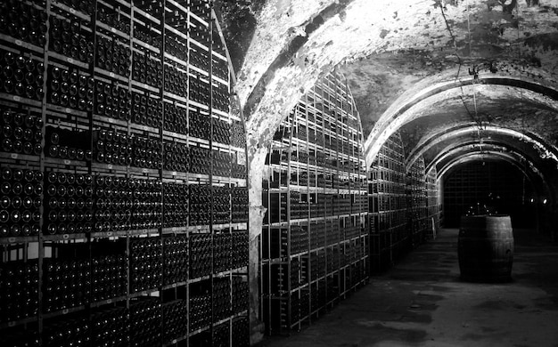 Black and white picture of a wine cellar