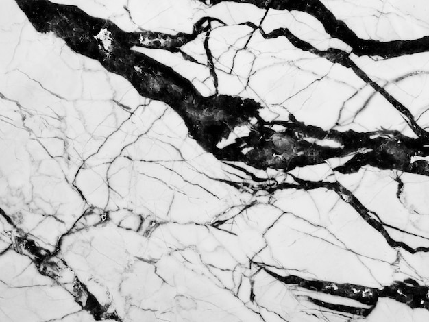 Black and white textured background of marble Premium Photo