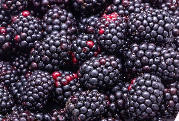 Blackberries background, ripe fresh berries macro photo