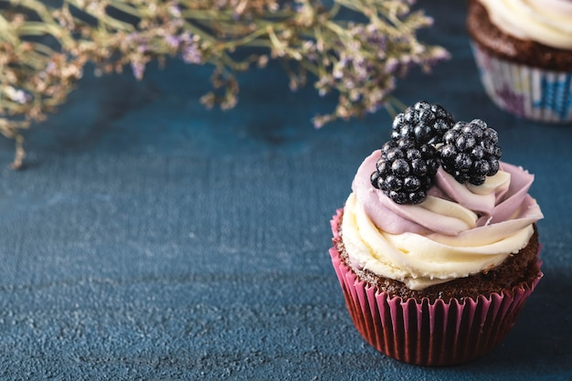 Blackberry cupcake  space for text