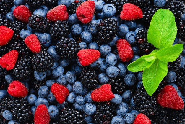 Blackberry, raspberry, blueberry and mint background.