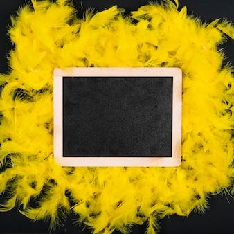 Blackboard on yellow feathers