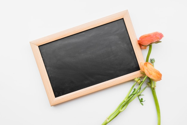 Blackboard and red flowers on white background