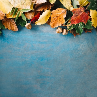 Blackboard with arrangement of leaves