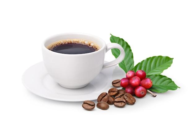 흰색 배경에 분리된 볶은 커피 콩과 붉은 커피 콩이 있는 블랙커피.