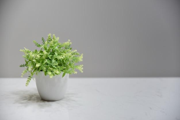 白い陶磁器の鍋および灰色のblackgroundの緑の植物