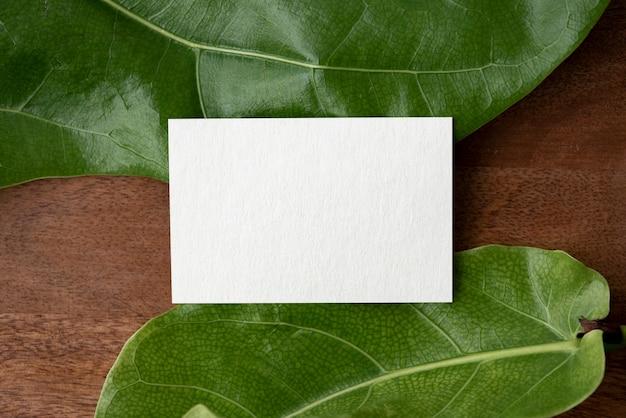 Biglietto d'auguri vuoto su foglie verdi