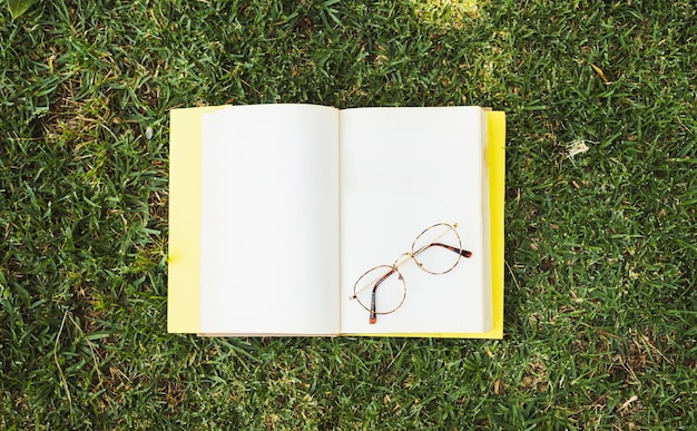 Blank book with glasses on meadow