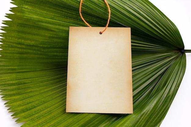 Пустая коричневая бумага на тропических пальмовых листьях на белом