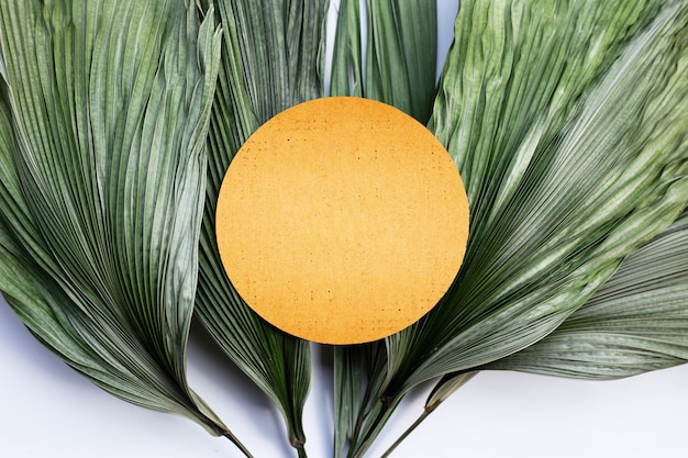 Blank brown round  paper on tropical palm dry leaves
