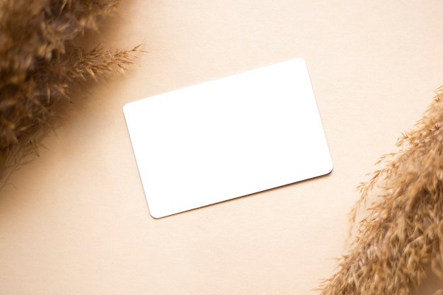 Blank business card isolated on light background with dry plants