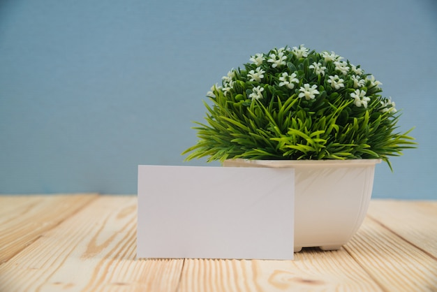 Blank business cards and little decorative tree on wood