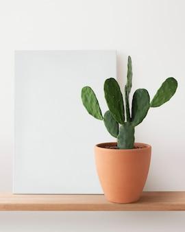 Blank canvas and cactus on a shelf
