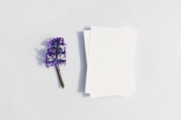Пустая карточка или записка и цветок гиацинта с жесткими тенями