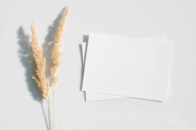 空白のカードまたは乾燥したパンパスグラスの花のメモ。フラットレイ。