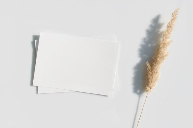 Пустая карточка или записка с высушенным цветком травы пампасов. вид сверху. Premium Фотографии