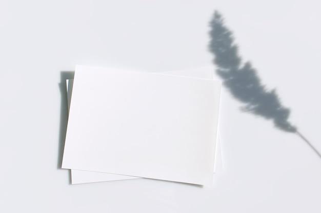 Пустая карточка или записка с тенью сушеного цветка травы пампасов на сером фоне.