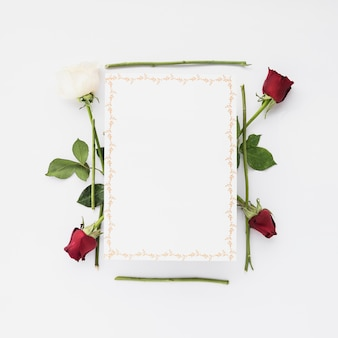Blank card with red and white roses on white background