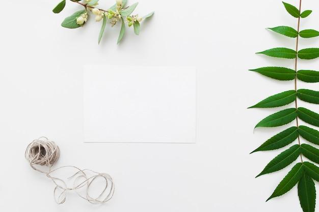 꼬기와 녹색 잎 빈 카드