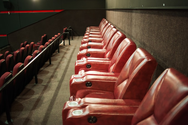 Blank chairs in a movie theater with a blank screen