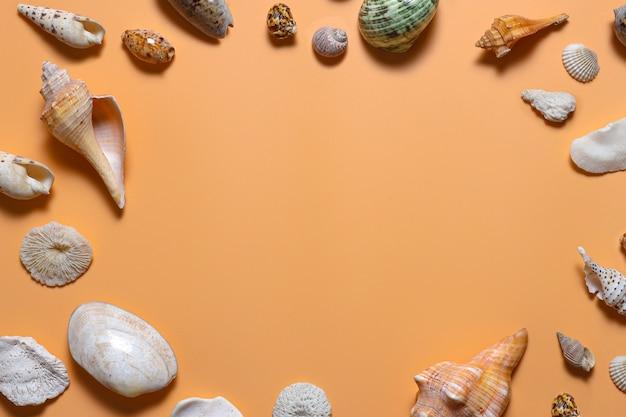 さまざまな貝殻から作られた空白の円形フレーム