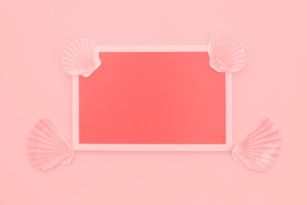 Blank coral frame decorated with scallop seashells on pink background