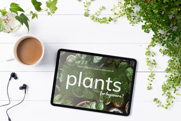 Пустой экран цифрового планшета на фоне комнатных растений