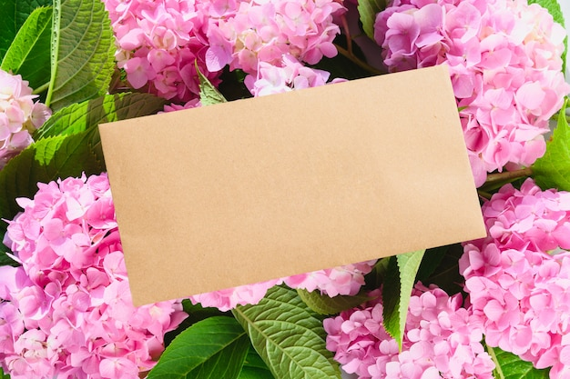 Blank envelope and pink hydrangea flowers. copy space. greeting card