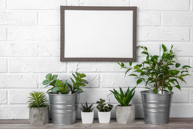 Blank frame next to flower pots collection