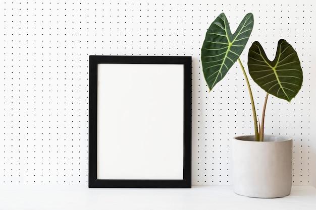 Пустая рамка на полке для растений идеи домашнего декора