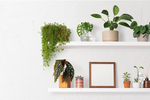 Blank frame on plant shelf home decor ideas