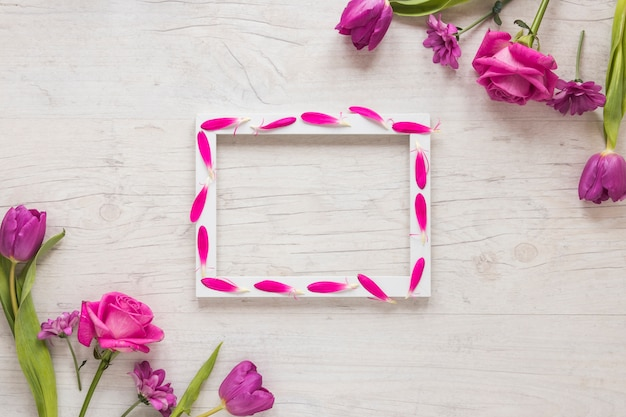 Blank frame with different flowers on table